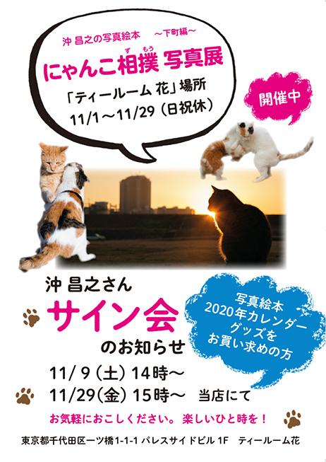 「にゃんこ相撲」写真展を11/1(金)~11/29(金)に開催しています!