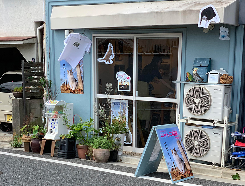 「にゃんこ相撲」写真展が谷中銀座で開催中です